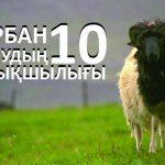 Құрбан шалудың 10 артықшылығы