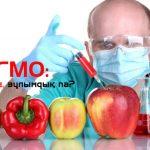 «Байтақ» пікірталас алаңы: «Халық ГМО жайында толық білуі керек»