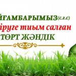 Пайғамбарымыз(с.ғ.с) өлтіруге тиым салған төрт жәндік