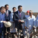 Ж.Түймебаев: Оңтүстіктің бренді саналатын мақта дақылы бәсекеге қабілетті болу қажет