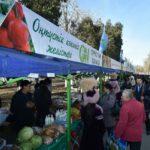 ОҚО-да ауыл шаруашылығы өнімдерінің жаңа жылдық жәрмеңкесі өтті