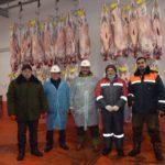 ОҚО-дағы «Қайып ата» ЖШС биыл Иран Ислам мемлекетіне 6 мың бас қой етін экспорттады