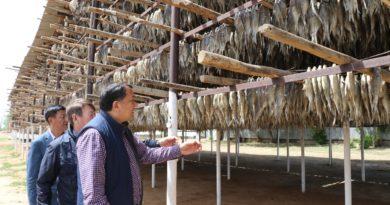 Нұрлан Ноғаев: Бизнес субъектілеріне мемлекеттің қолдауы аймақтың экспорттық әлеуетін арттыруға септігін тигізеді