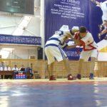 Павлодар облысында «Ұлы дала рухы» ұлттық спорт бәсекесінің өңірлік кезеңі өтті