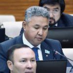 Азат Перуашев бюджетті талқылау барысында салық органдарының жұмысын сынға алды