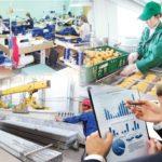 «Бизнестің жол картасы-2020»    Шағын және орта кәсіпкерліктің көкжиегі кеңейеді