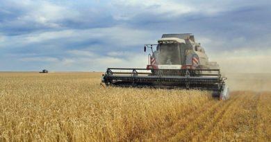 Павлодар облысында ауыл шаруашылығы саласына салынған инвестициялар көлемі артуда