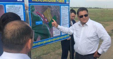 Келесі жылы Павлодар облысында 400 гектар қант қызылшасы отырғызылады
