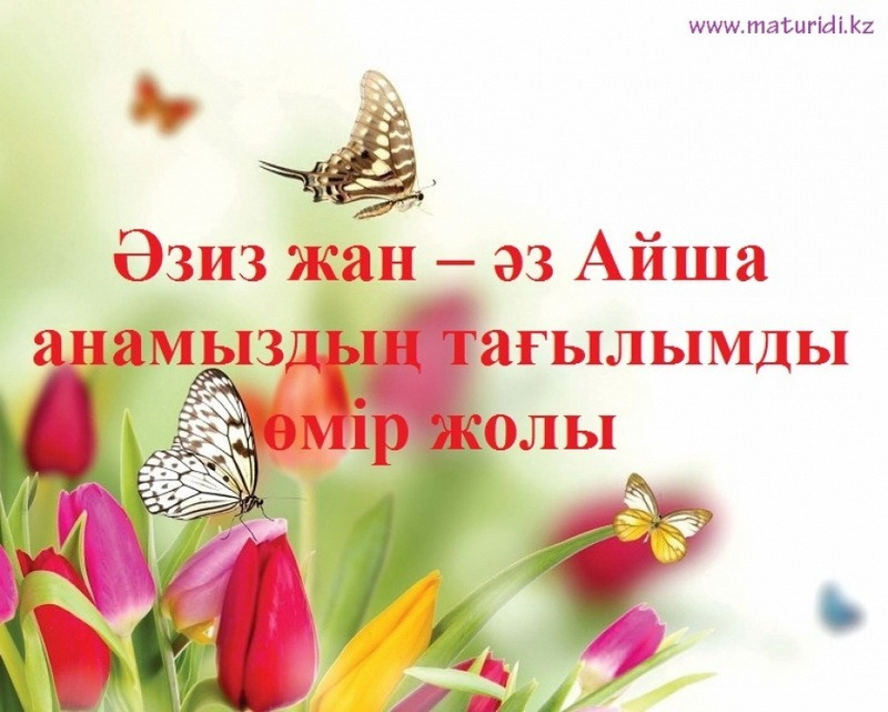 Айша анамыздың (р.а.) көркем мінезі