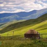 ШҚО-да 100 мың гектар жер кімдерге берілген?